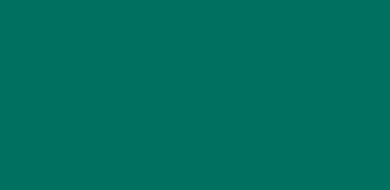 Homeland Vinyl logo